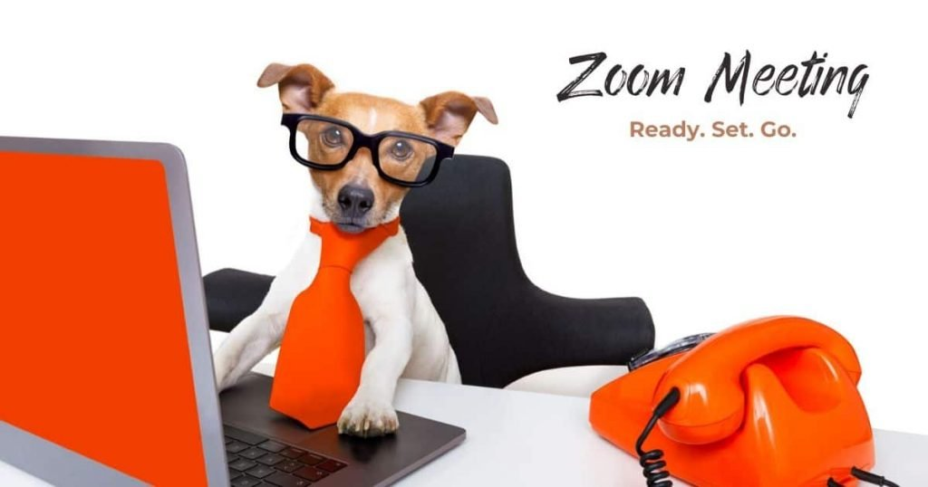 Online meeting - zoom